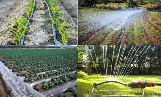 Different Irrigation Systems